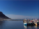 More boats in Kalk Bay harbour
